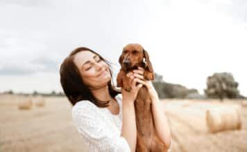 Quel budget annuel faut-il prévoir pour un chien ?