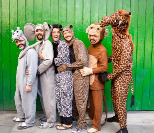 Costume animaux