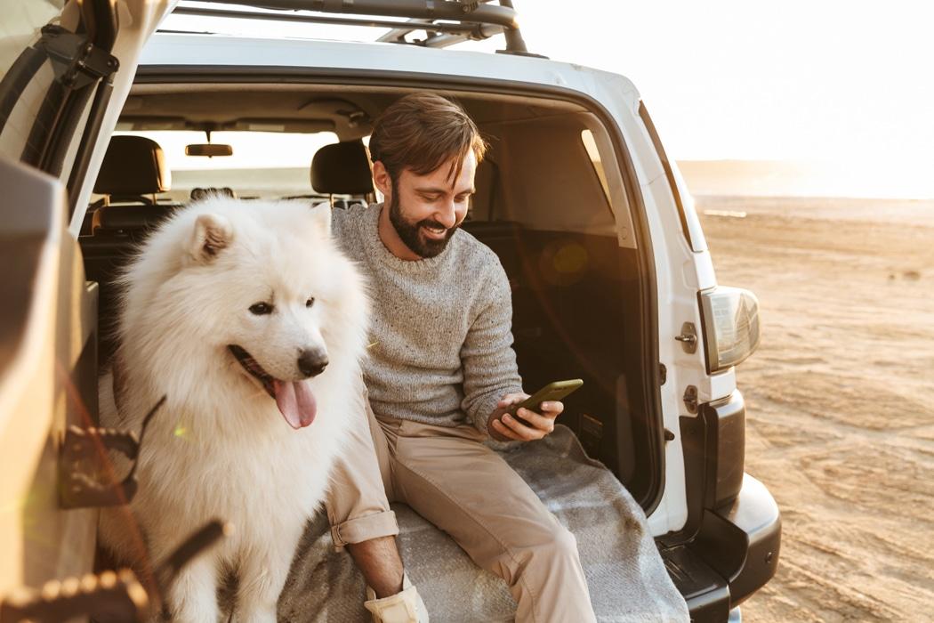 Voyager avec un chien aux États-Unis : quelles formalités ?